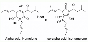 Isomeriserte alfasyrer