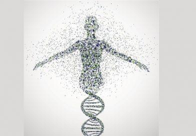 Genom DNA